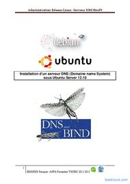 Tutoriel Installation d'un serveur DNS sous Ubuntu 1